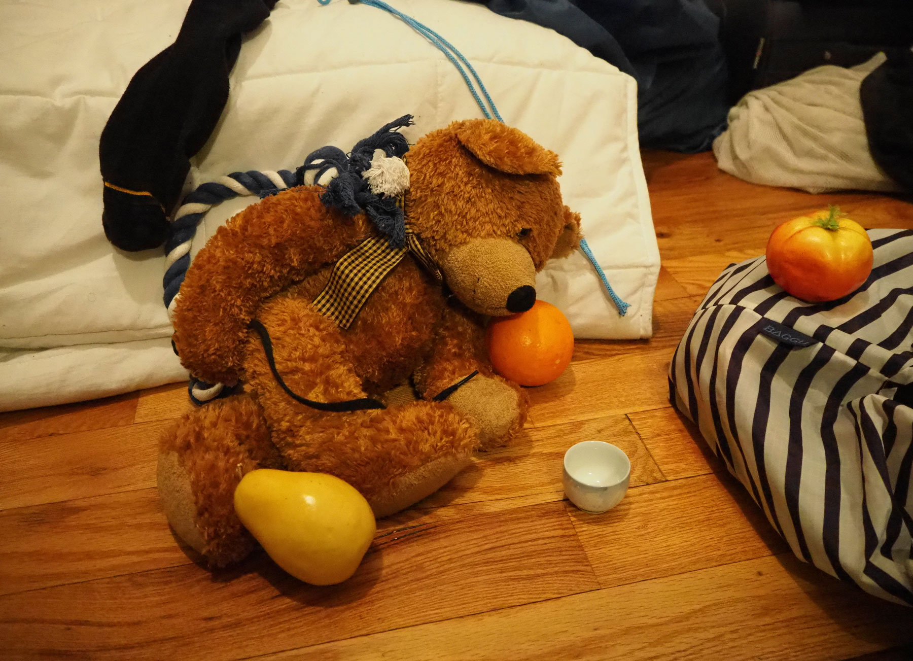 teddy bear and a black sock on hard wood floor with plastic orange and pear and dog chew toy and clothing