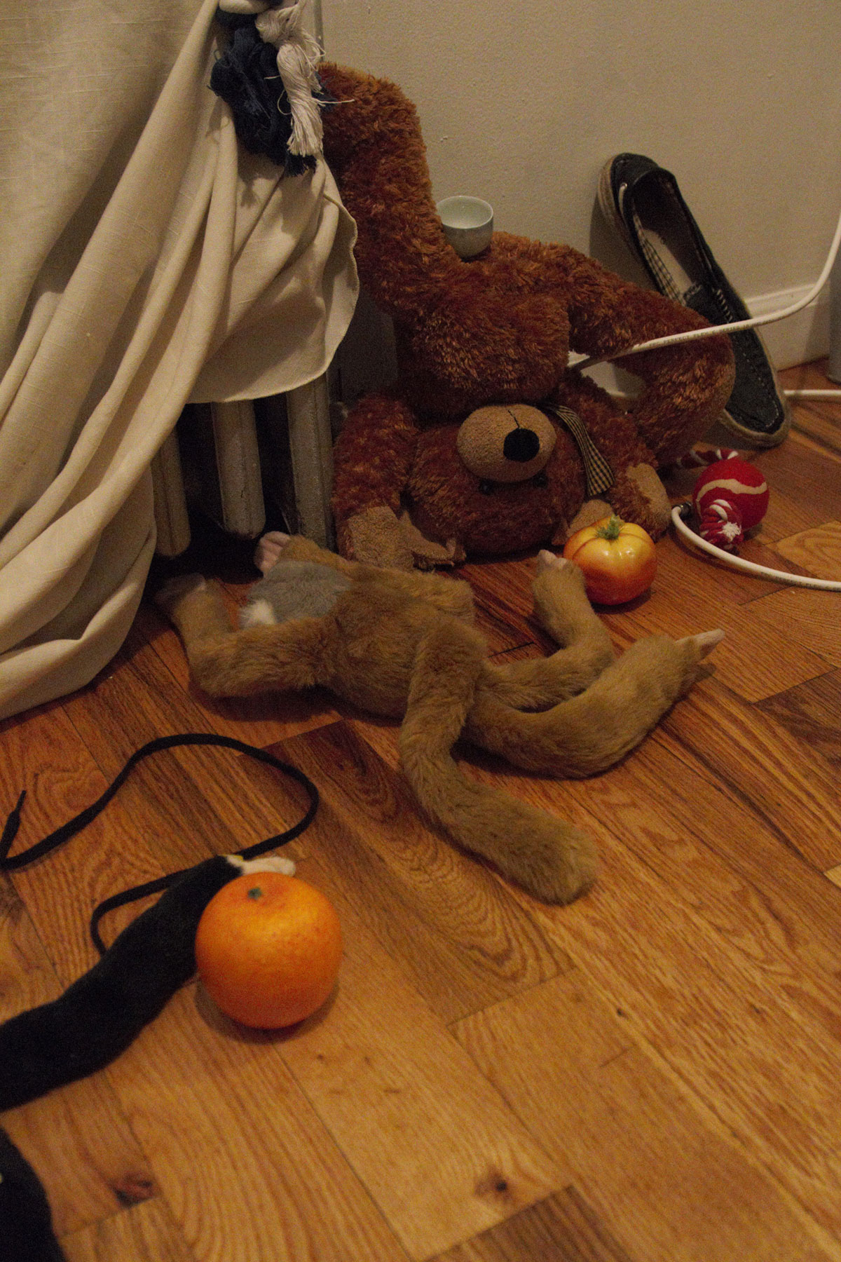 teddy bear and stuffed monkey on hard wood for with shoe and plastic fruit and dog chew toy